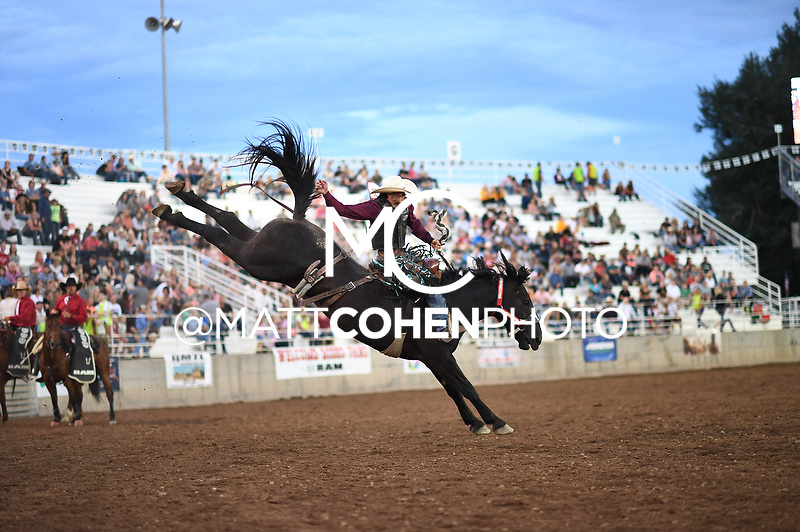 Roper Kiesner / 045 Colt 45 of Flying U, Nephi 2018<br /> <br /> <br /> UNEDITED LOW-RES PREVIEW<br /> <br /> File shown may be an unedited low resolution version used as a proof only. All prints are 100% guaranteed for quality. Sizes 8x10+ come with a version for personal social media. I am currently not selling downloads for commercial/brand use.
