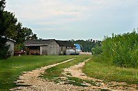 Winter hemp and out buildings flank a well worn path leading to the back area of a local farm in Gloucester County, NJ.