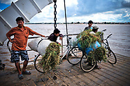 Young Cambodian farmer cross the Mekong on a barge, Cambodia, Southeast Asia
