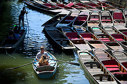 © Licensed to London News Pictures. 19/07/2016. Oxford, UK. A young couple row their boat past punts while enjoy the summer sun on the River Cherwell in the grounds of Oxford University in Oxfordshire, on what is due to be the hottest day of 2016 so far, with temperatures possibly hitting the mid 30's.  Photo credit: Ben Cawthra/LNP