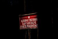 """03.2015 Puszcza Bialowieska N/z tablica informujaca o rezerwacie """" Lasy Naturalnea Puszczy Bialowieskiej """" fot Michal Kosc / AGENCJA WSCHOD"""