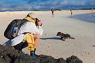 A newborn sea lion pup approaches a photographer on a sandy beach on the island of San Cristobal in the Galapgos National Park, in Ecuador, South America