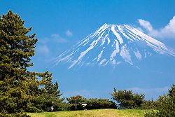 Izu Peninsula golfers enjoying a day below Mt. Fuji.