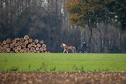 Moens Jef, BEL<br /> Liezele 2020<br /> © Hippo Foto - Dirk Caremans<br /> 08/11/2020