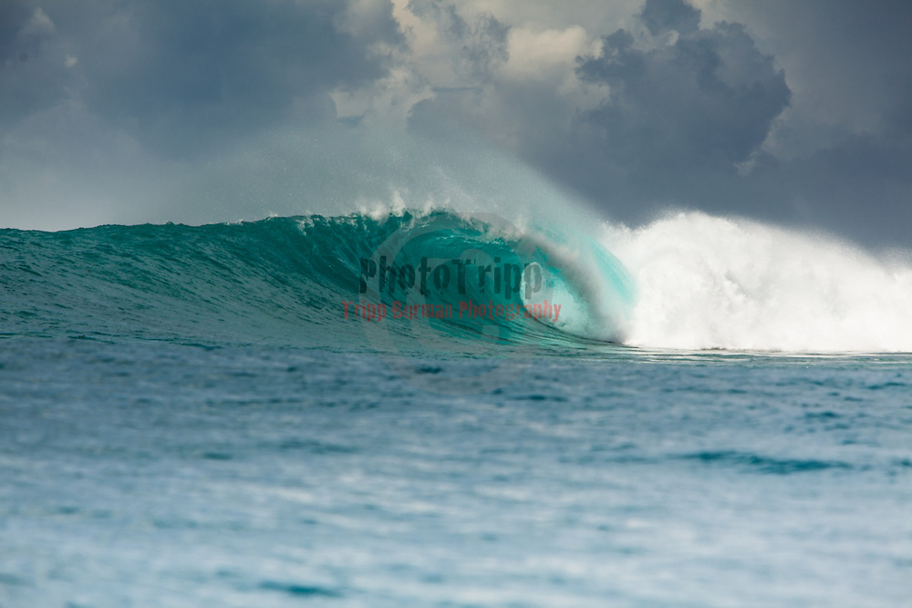 Today's white Insert Location Here in Surf Break ,  March  28,2013.  Photo: Tripp Burman