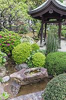 Myoho-ji Carp Pond Yokohama -  Myoho-ji is an ancient temple in the Yokohama area, dating back to the 14th century.  Its simple pond koi garden is one of the nicest in the Kanto area.