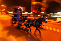 Caleche (horse drawn carriage) on the Corniche, Luxor (along the Nile RIver), Egypt