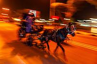 Caleche (horse drawn carriage) on the Corniche, Luxor (along the Nile RIver), Egypt