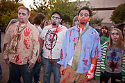 """Oct. 30, 2009 -- PHOENIX, AZ: Zombies gather in downtown Phoenix Friday evening. About 200 people participated in the first """"Zombie Walk"""" in Phoenix, AZ, Friday night. The Zombies walked through downtown Phoenix """"attacking"""" willing victims and mixing with folks going to the theatre and downtown sports venues.  Photo by Jack Kurtz"""