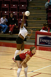 06 November 2004....Paige White serves....Illinois State University Redbirds V SouthWest Missouri State University Bears Volleyball.  Redbird Arena, Illinois State University, Normal IL..Illinois State Redbirds v Southwest Missouri State
