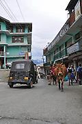 India, Himachal Pradesh, Tosh Valley