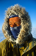 Wearing face mask, dog sledging and skiing across Greenland icecap, Arctic