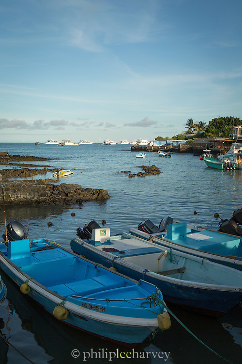Puerto Ayora Harbour, Santa Cruz Island, Galapagos Islands, Ecuador, South America