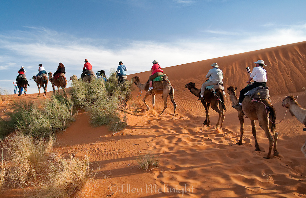 Tour group riding on camels in the Sahara Desert, Morocco
