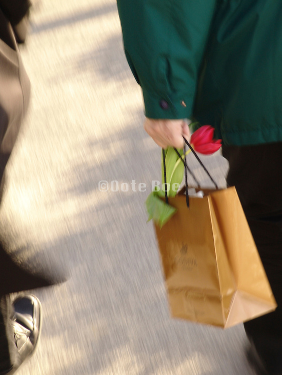Man carrying a single tulip in a paper bag.