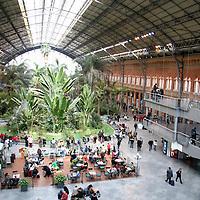 Europe, Spain, Madrid. The atrium of the Madrid Atocha Railway Station.