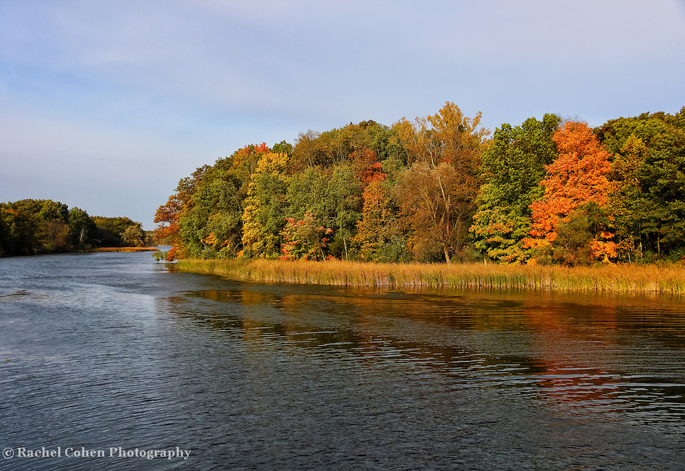"""""""Winds on Waters Deep""""<br /> <br /> Enjoy beautiful fall foliage, a deep and winding river and  lovely grasses that grow along its shore in this beautiful autumn landscape!!<br /> <br />  Autumn Landscapes of Michigan by Rachel Cohen"""