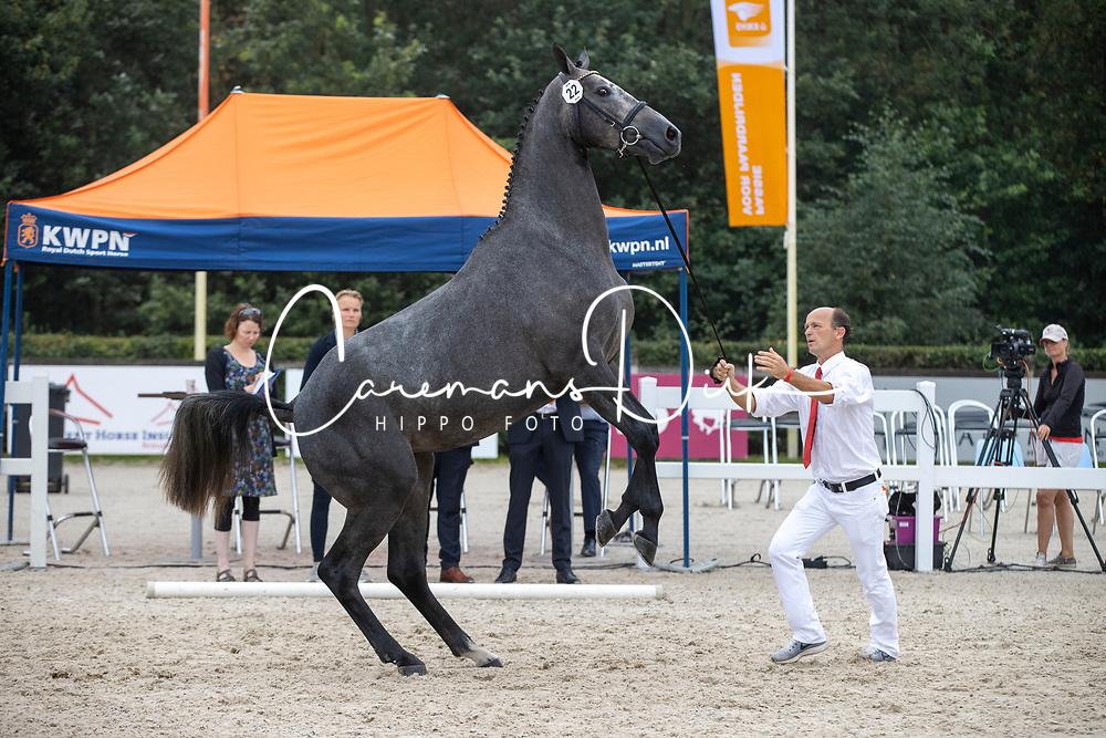 022, Magdalena VDL<br /> Nationaal Kampioenschap KWPN<br /> 3 jarige springmerries<br /> © Hippo Foto - Dirk Caremans<br />  15/08/2020