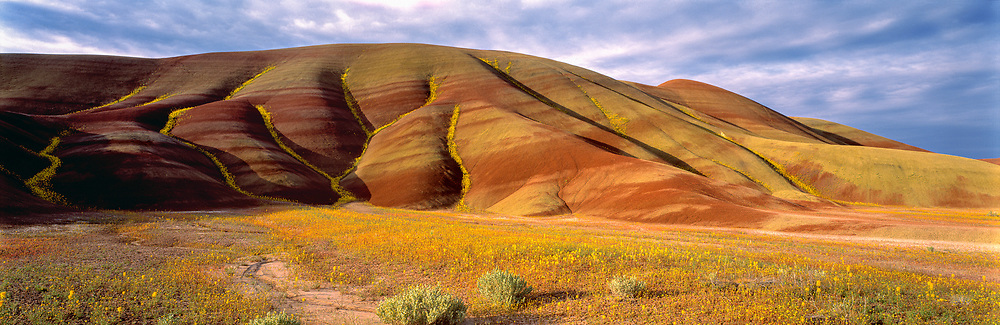 Oxidized iron minerals form red bands at the Painted Hills section of John Day Fossil Beds National Monument in Oregon. ©Ric Ergenbright