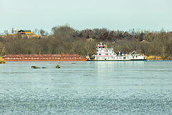 A tug boat pushes a number of barges down the Illinois River north and east of Starved Rock State Park.  The unit is held up by a line waiting to pass the lock and dam at Starved Rock