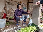 Vendor sells a small selection of fruit and vegetables in the food market of Jianshui, Honghe prefecture, Yunnan province, China.