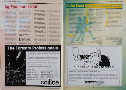 All Ireland Senior Hurling Championship - Final,.01.09.1996, 09.01.1996, 1st September 1996,.01091996AISHCF, .Wexford v Limerick,.Wexford 1-13, Limerick 0-14,.Coillte, The Forestry Professionals, .SIPTU,