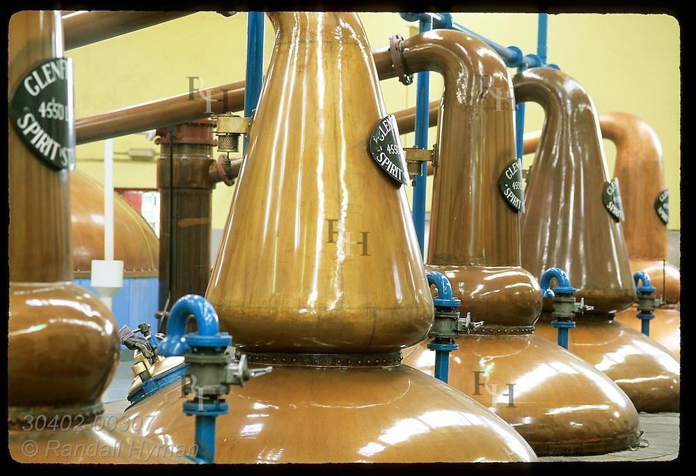 Copper pot stills sit in a row @ Glenfiddich Distillery, maker of well-known single malts;Dufftown Scotland