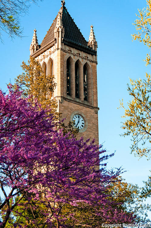 Campanile clock tower in the spring, Iowa State University