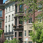 Boston's Commonwealth Avenue is lined on either side by historic and stately brick townhouses and mansions. The center mall is a mile long walkway of trees and statues of historic figures.
