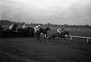 10/05/1965<br /> 05/10/1965<br /> 10 May 1965<br /> The races clear a hurdle in the Kingsway Amateur Handicap Hurdle during the Leopardstown Races on May 10, 1965.