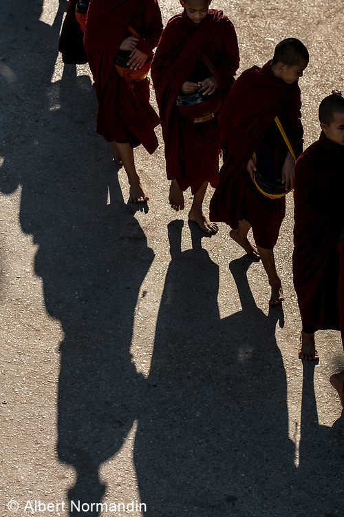 Procession of Monks collecting Alms, Monywa, Myanmar