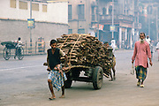 Man transporting wood, Calcutta , India