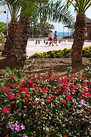 Estepona, Malaga Province, Spain, promenade_201810092532<br /> <br /> Copyright Image from Victor Patterson, Belfast, UK, BT9 5HG<br /> <br /> t: +44 28 9066 1296 (from Rep of Ireland 048 9066 1296)<br /> m: +44 7802 353836<br /> <br /> victorpattersonbelfast@gmail.com<br /> www.victorpatterson.com<br /> <br /> Please see my Terms and Conditions of Use at https://www.victorpatterson.com/page2<br /> It is IMPORTANT that you familiarise yourself with them.<br /> <br /> Images used on the Internet incur an additional cost and must be visibly watermarked i.e. © Victor Patterson within the body of the image and copyright metadata must not be deleted. Images used on the Internet have a size restriction of 4kbs and are chargeable at rates available at victorpatterson.com.<br /> <br /> This image is only available for the use of the download recipient i.e. television station, newspaper, magazine, book publisher, etc, and must not be passed on to any third party. It is also downloaded on condition that each and every usage is notified within 7 days to victorpattersonbelfast@gmail.com.<br /> <br /> The right of Victor Patterson to be identified as the author is asserted in accordance with The Copyright Designs And Patents Act (1988). All moral rights are asserted.