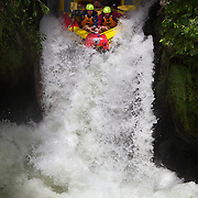Tourists Whitewater rafting with Kaituna Cascades, on the Kaituna River. Rotorua.  The trip includes one of the world's highest commercially rafted waterfall, with a 6 to 7 metres {21feet} drop. The trip flows through an extremely steep and narrow canyon taking around 50 minutes to navigate fourteen drops, including two waterfalls and several rapids. Rotorua, New Zealand,, 10th December 2010 Photo Tim Clayton