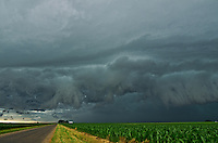 A shelf cloud quickly approaches over a corn field near Lincoln, Illinois. It was fascinating watching the rapid motion of the leading edge as it got closer.<br />