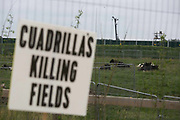 A sign put up by anti-fracking activists in the entrance to  Quadrillas drill site in New Preston Road, July 01 2017, Lancashire, United Kingdom. Cows grassing on the filed rented by Quadrilla. The blockade is a repsonse to the emmidiate drilling for shale gas, fracking, by the fracking company Quadrilla and part of an ongoing struggle where makeshift towers and makeshift camps have sprung up outside the premisses. Lancashire voted against permitting fracking but was over ruled by the conservative central Government. All the activists have been active in the struggle against fracking for years but this is their first direct action of peacefull protesting. Fracking is a highly contested way of extracting gas, it is risky to extract and damaging to the environment and is banned in parts of Europe . Lancashire has in the past experienced earth quakes blamed on fracking.