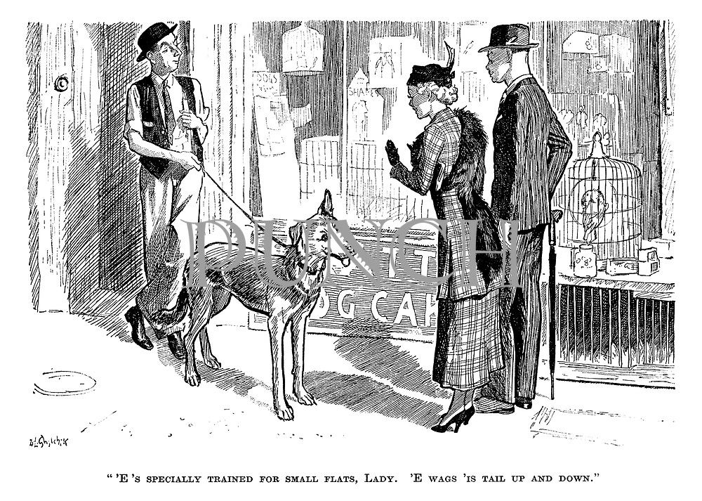 """""""'E's specially trained for small flats, lady. 'E wags 'is tail up and down."""""""