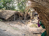 woman carrying dried grass on the side of the road near Bardia National Park, Nepal.