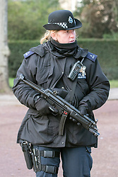 © Licensed to London News Pictures. 29/01/2015. London, UK. Scotland Yard is set to train hundreds more officers as a reserve firearms unit to deal with a possible terrorist gun attack on London. Met Commissioner Sir Bernard Hogan-Howe said the force was reviewing the number of armed officers in the wake of the Paris outrages. FILE PICTURE (22/01/15) OF  A female officer near the Mall near St James Palace.  Armed police officers in and around central London today 22 January 2015. UK Foreign Secretary Philip Hammond said that ISIS is the greatest threat to the UK's security at the moment. Photo credit : Stephen Simpson/LNP