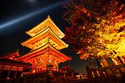 To-ji temple illuminated at night, Kyoto, Japan