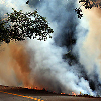 A Cal Fire crew is engulfed by smoke as they keep a backburn in check along Felton Empire Road on Wednesday. A backburn is a fire that is deliberately initiated in front of an active fire front, usually a forest fire, grass fire, or some other type of wildfire. Firefighters used a drip torch to ignite brush along the road to prevent embers from the current fires from catching in the area and lighting fires in tree crowns. One of the challenges of the  CZU August Lightning Complex blazes is that there is an abundance of fuel available since the area has not had a major forest fire in many decades.