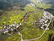 WUYUAN, CHINA - MARCH 17: (CHINA OUT) <br /> <br /> Rapeseed flowers are in full bloom at terraced fields on March 17, 2016 in Wuyuan, Jiangxi Province of China. About 16,500 acres of rapeseed flowers are in full bloom in Wuyuan County. <br /> ©Exclusivepix Media