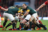 Fourie Du Preez the South Africa captain hooking the ball out. Rugby World Cup 2015 quarter final match, South Africa v Wales at Twickenham Stadium in London, England  on Saturday 17th October 2015.<br /> pic by  John Patrick Fletcher, Andrew Orchard sports photography.