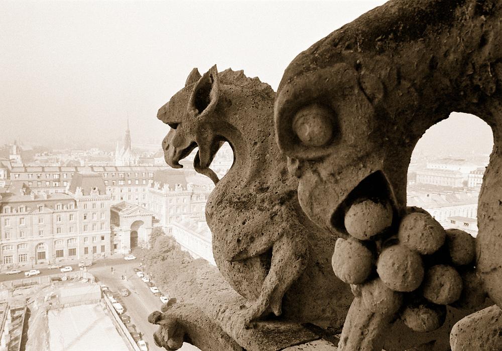 Sepia photo of Gargoyles, Notre-Dame Cathedral, Paris