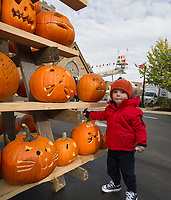 """Luciano Sestito was comparing """"lids"""" as he walked through the pumpkin patch during Pumpkin Fest on Saturday afternoon.  (Karen Bobotas/for the Laconia Daily Sun)"""