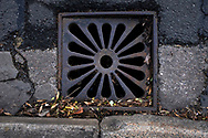 Maintenance Hole- and Drain Covers of Wirral by Colin McPherson, 2020-21.<br /> <br /> A gully cover in a distinctive shape unique to the village of Oxton, Wirral. Several streets have these anonymous covers with this ornate pattern.