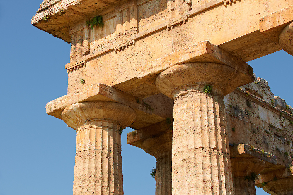 Close up of the ancient Doric Greek capitals & columns of the  Temple of Hera of Paestum built in about 460–450 BC. Paestum archaeological site, Italy. .<br /> <br /> If you prefer to buy from our ALAMY PHOTO LIBRARY  Collection visit : https://www.alamy.com/portfolio/paul-williams-funkystock/paestum-greek-temples.html<br /> Visit our CLASSICAL WORLD HISTORIC SITES PHOTO COLLECTIONS for more photos to buy as buy as wall art prints https://funkystock.photoshelter.com/gallery-collection/Classical-Era-Historic-Sites-Archaeological-Sites-Pictures-Images/C0000g4bSGiDL9rw