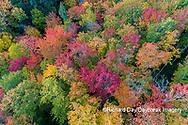 64776-02105 Aerial view of Hugoboom Lake in fall color Alger Co. MI