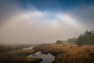 Fogbow over tidal estuary at Limantour Beach, Point Reyes National Seashore, Marin County, California