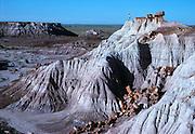 Petrified Forest National Park in Arizona was once home to some of the earliest dinosaurs known from the Triassic some 220 million years ago.<br /> <br /> <br /> Petrified Forest National Park in Arizona was once home to some of the earliest dinosaurs known from the Triassic some 220 million years ago.